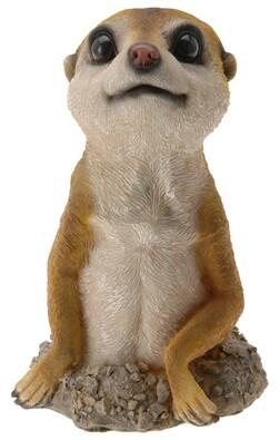 Zahradní dekorace surikata