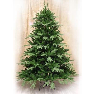 Vánoční stromeček jedle Frasier,  v. 210 cm, zelená