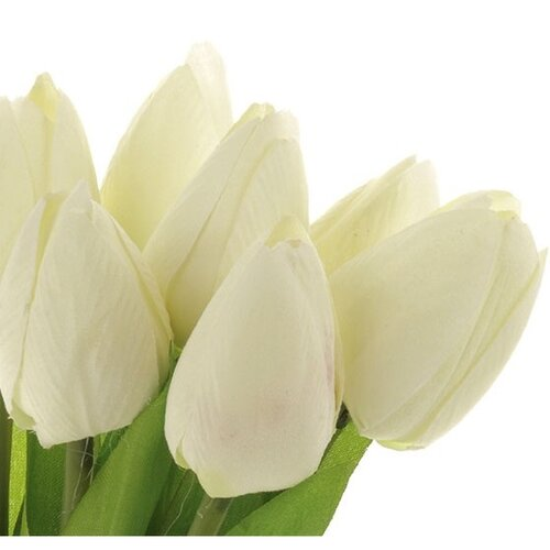 Krémszínű tulipánok, 7 virággal, 35 cm