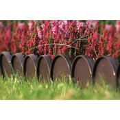 Zahradní palisáda Garden Line hnědá, 10 m