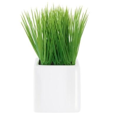 ASA Selection umělá květina v květináči grass 1174