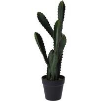 Koopman Umelý kaktus Willcox, 54 cm