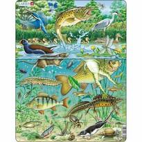 Larsen Puzzle Zvieratá v rybníku, 50 dielikov