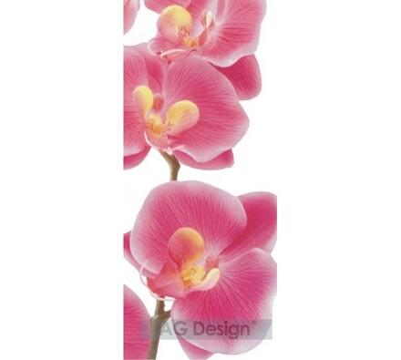 Fototapeta Storczyk różowa 90 x 202 cm