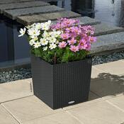 Lechuza Cube Cottage 40 plastový květináč samozavlažovací antracit