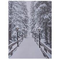 LED obraz na plátne Winter, 40 x 30 cm