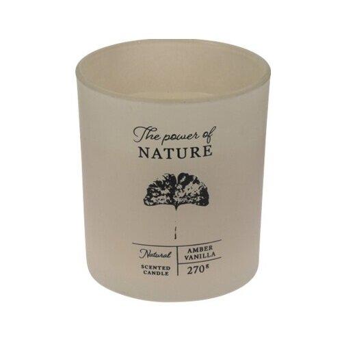 Svíčka ve skle The power of nature Amber vanilla, 10 x 8,8 cm