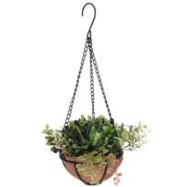 Mű pozsgás levelű növény ikebana függesztett, virágtartóban, 21 x 21 x 18 cm