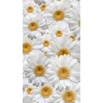 Daisy függöny, 140 x 245 cm