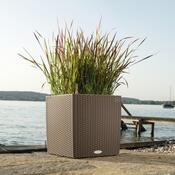 Lechuza Cube Cottage 40 plastový květináč samozavlažovací mokka
