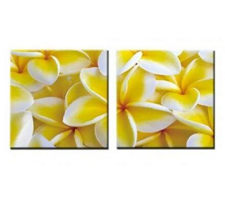 Dvoudílný obraz Yellow bloom, 60x60 cm, vícebarevná, 60 x 60 cm