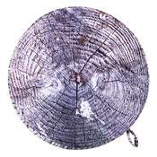 Sedák Dřevo šedá, 40 cm