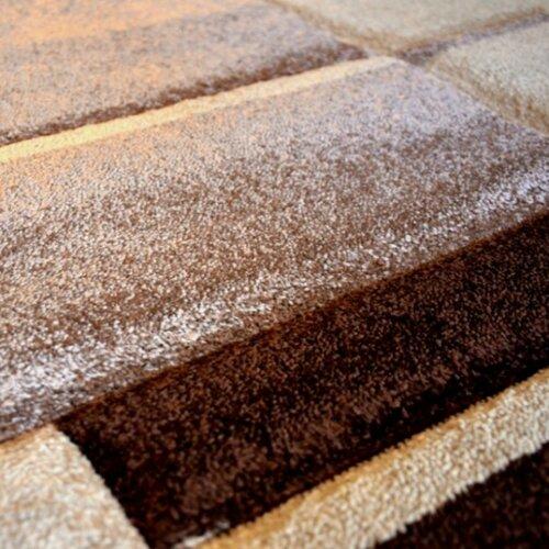 Kusový koberec Hawaii 1310 Brown, 120 x 170 cm