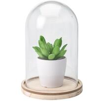 Umelá rastlina v skle Pearlie, 19 cm
