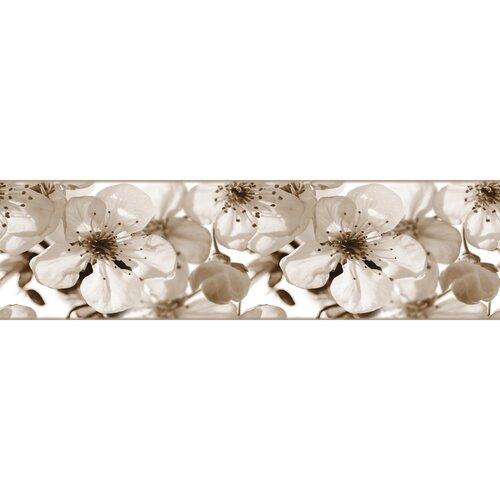Samolepiaca bordúra Jabloňový kvet, 500 x 14 cm