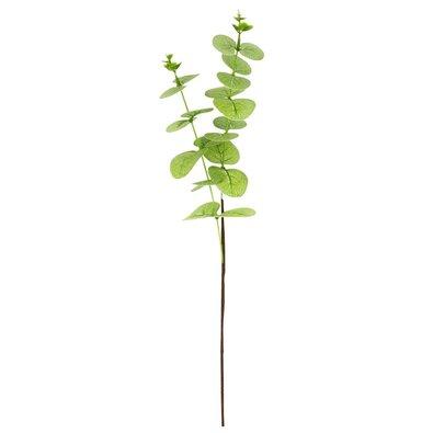 Eukalyptus műnövény, zöld, 51 cm