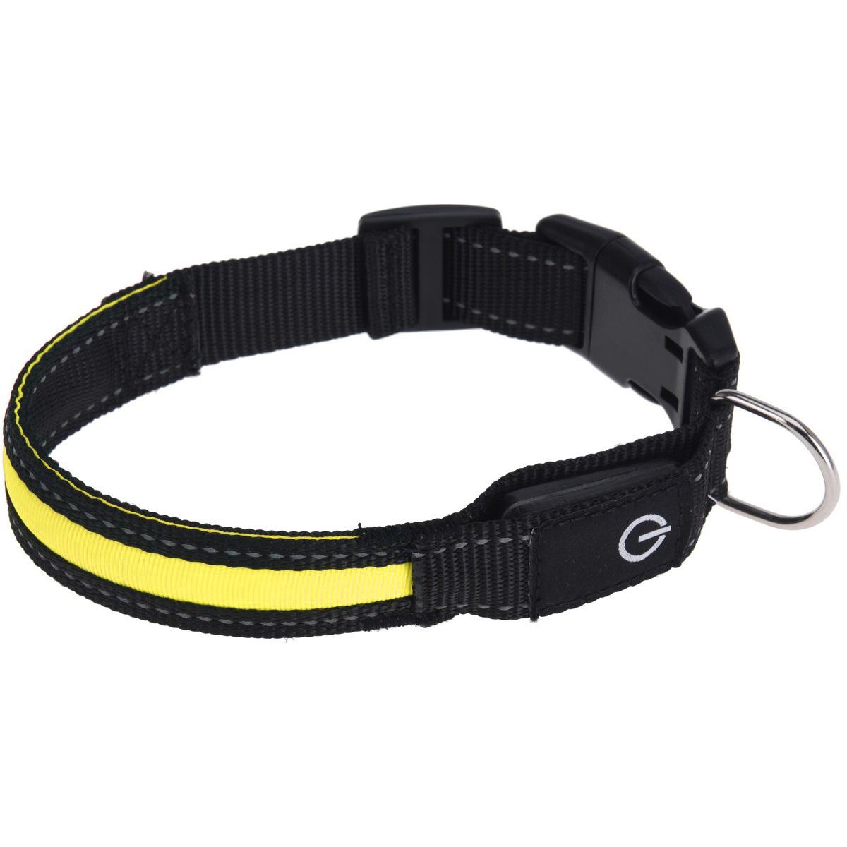 Zgardă câine Collar, galben imagine