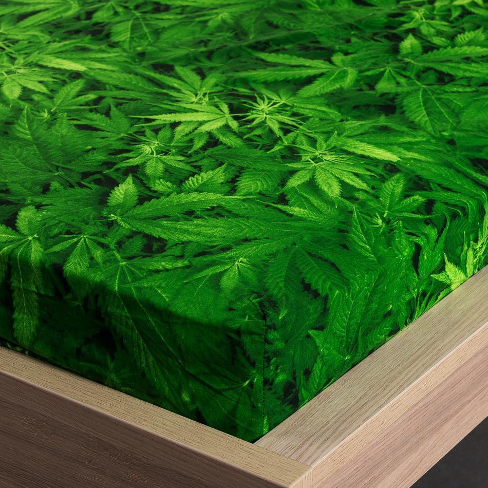 4Home Prostěradlo Aromatica, 160 x 200 cm