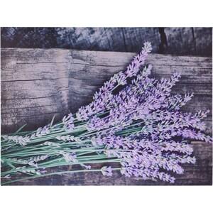 Obraz na plátně Nantes Lavender