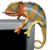 Chameleon usb
