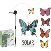 Motýl solární