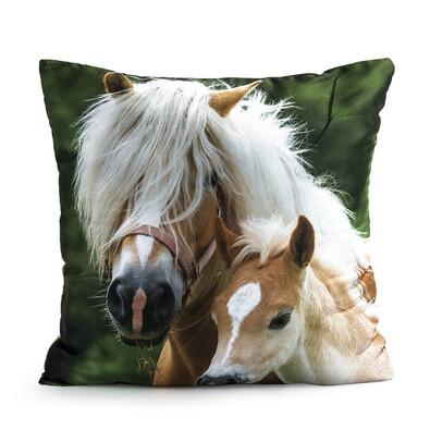 Polštářek Horses Klisna a hříbě, 40 x 40 cm