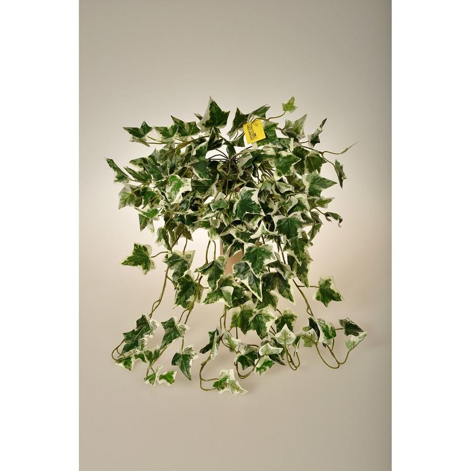 Umělý Holandský břečťan, 80 cm
