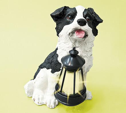 Solární dekorace, pes, 25 cm