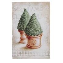 Obraz na płótnie Thuja, 35 x 45 x 1 cm