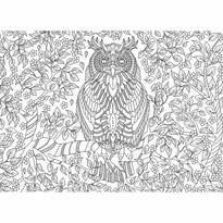 EuroGraphics Color me puzzle Moudrá sova, 500 dílků + sada na zavěšení