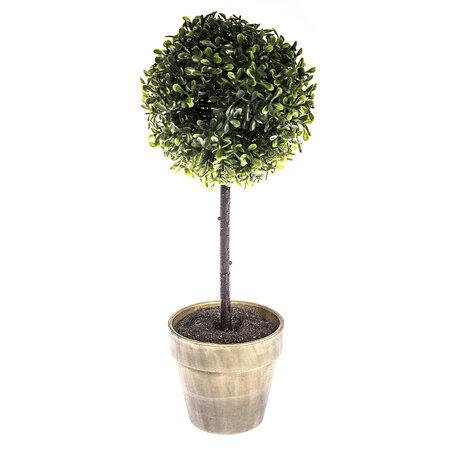 Drzewko bukszpan w doniczce szary, 40 cm