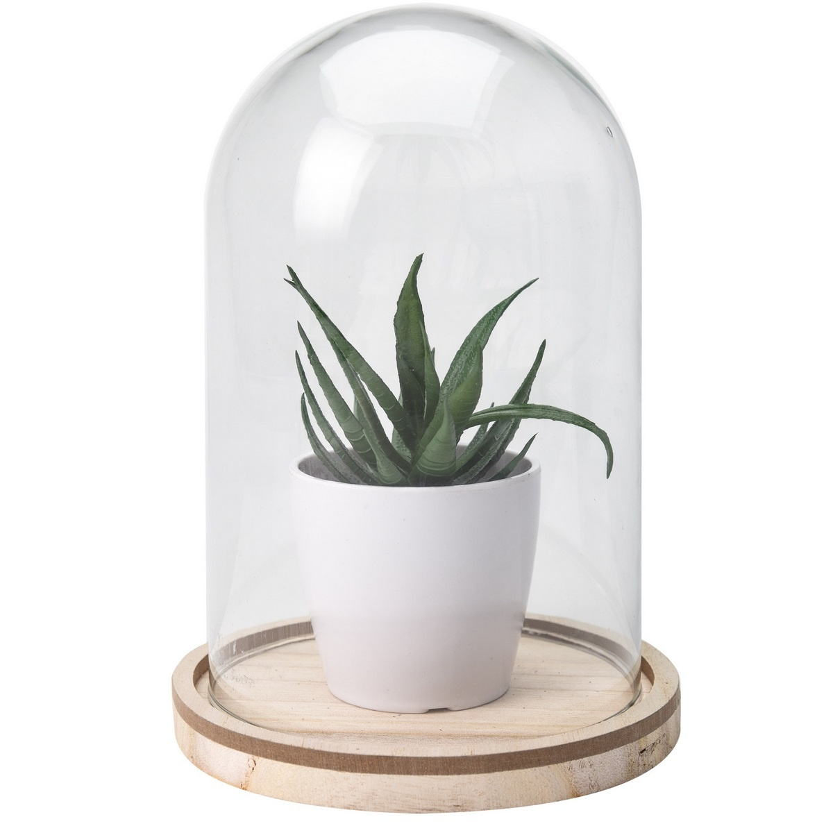 Koopman Umělá rostlina ve skle Stephania, 19 cm