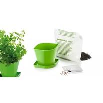 Tescoma Súprava pre pestovanie byliniek SENSE, koriander