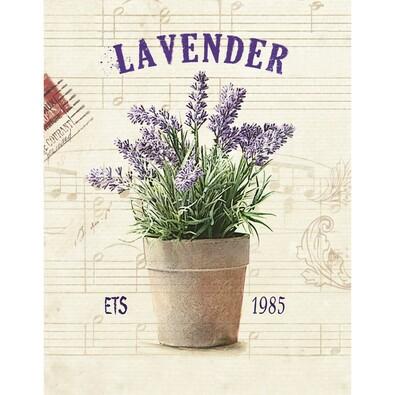 Jednodílný obraz Levandule v květináči