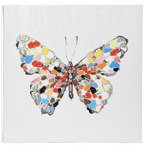 Obraz Colours Butterfly, 50 x 50 cm
