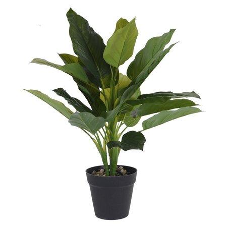 Koopman Umělá rostlina v květináči Carly, 45 cm