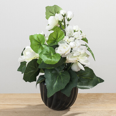 Umělá květina begónie bílá
