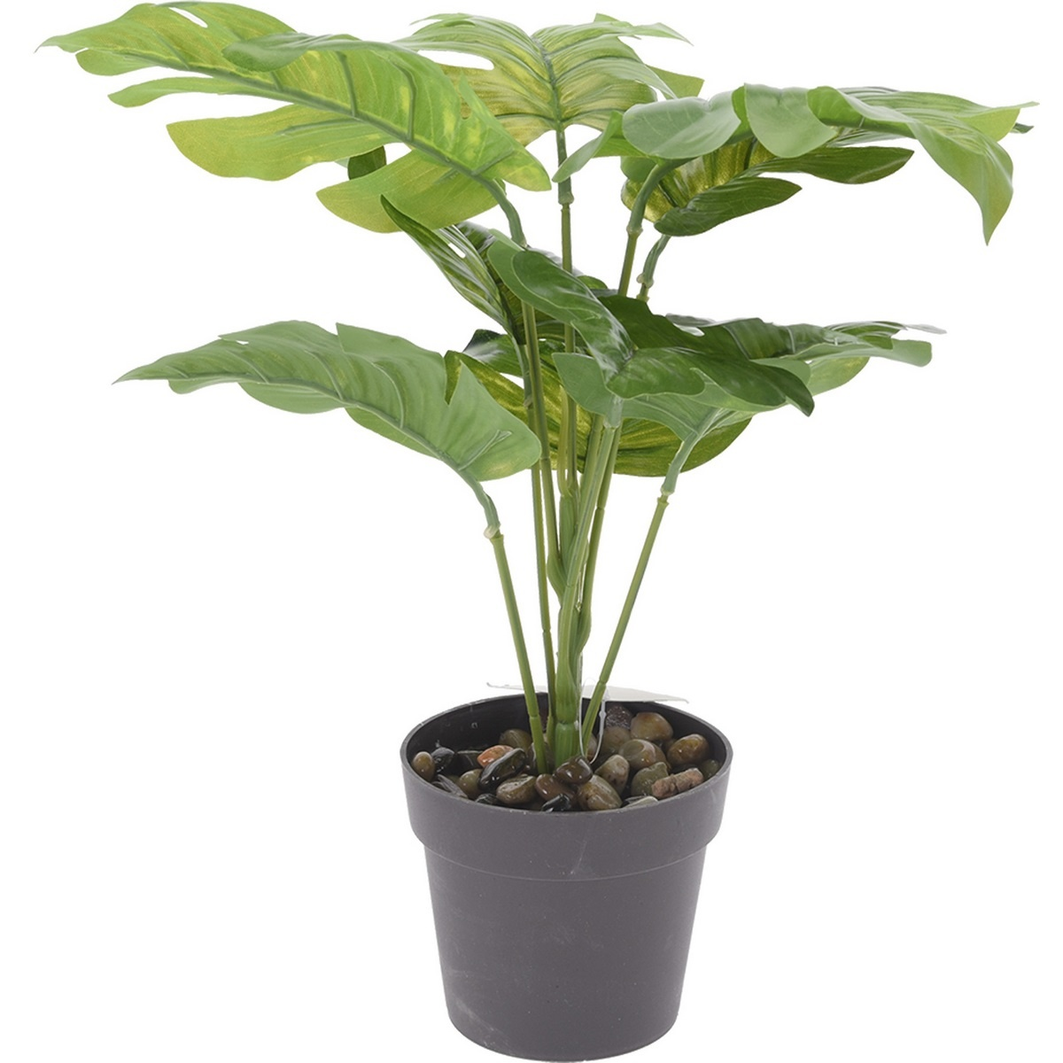 Koopman Umělá rostlina v květináči Noelle, 30 cm
