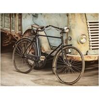Obraz na plátne Vélociped, 78 x 58 cm