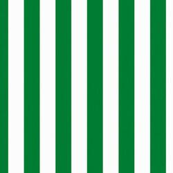 Tapeta Korsi 70 x 100 cm, zelená