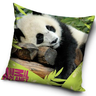 Polštářek Panda, 40 x 40 cm