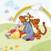 Polštářek Medvídek Pú a přátelé, 40 x 40 cm