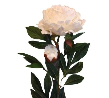 Umělé květiny - Pivoňky, bílá