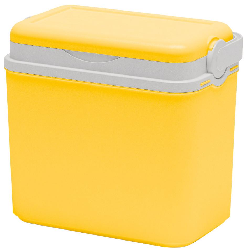 Chladicí box plast 10 l, žlutá (353006) od www.4home.cz