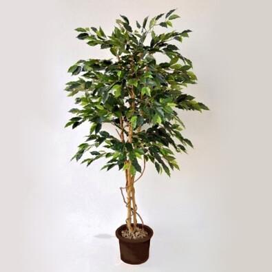 Umělý strom ficus benjamin 170 cm