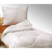 Set pătură şi perne, de vară, 140 x 200 cm, 70 x 90 cm