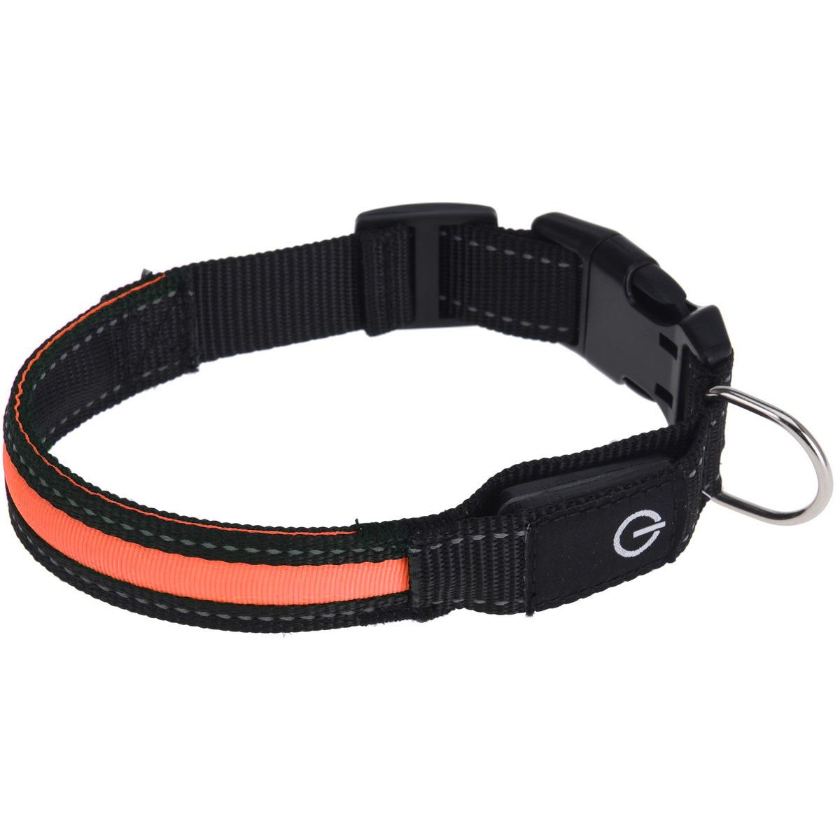 Zgardă câine Collar, portocaliu imagine