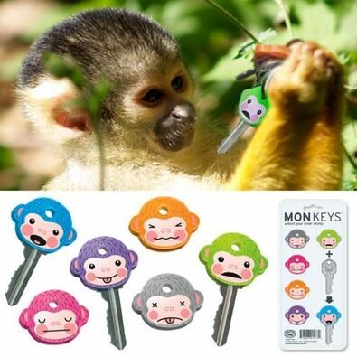 Rozlišení na klíče - opice