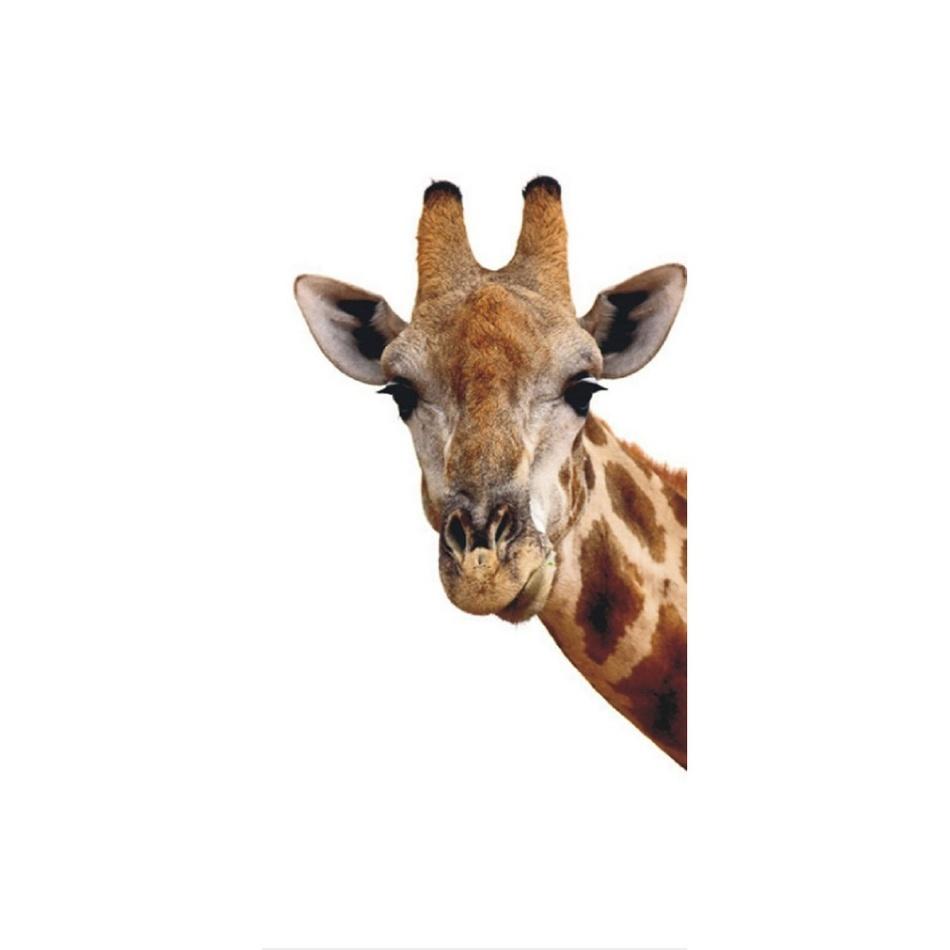 Fototapeta žirafa 90 x 202 cm, Hornschuch