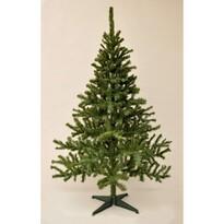 Vánoční stromek Smrk kanadský, 210 cm
